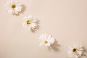 debarrasser odeurs persistantes