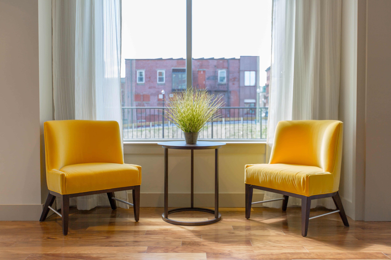 deux chaises en face autour d'une plante en face d'une fenêtre